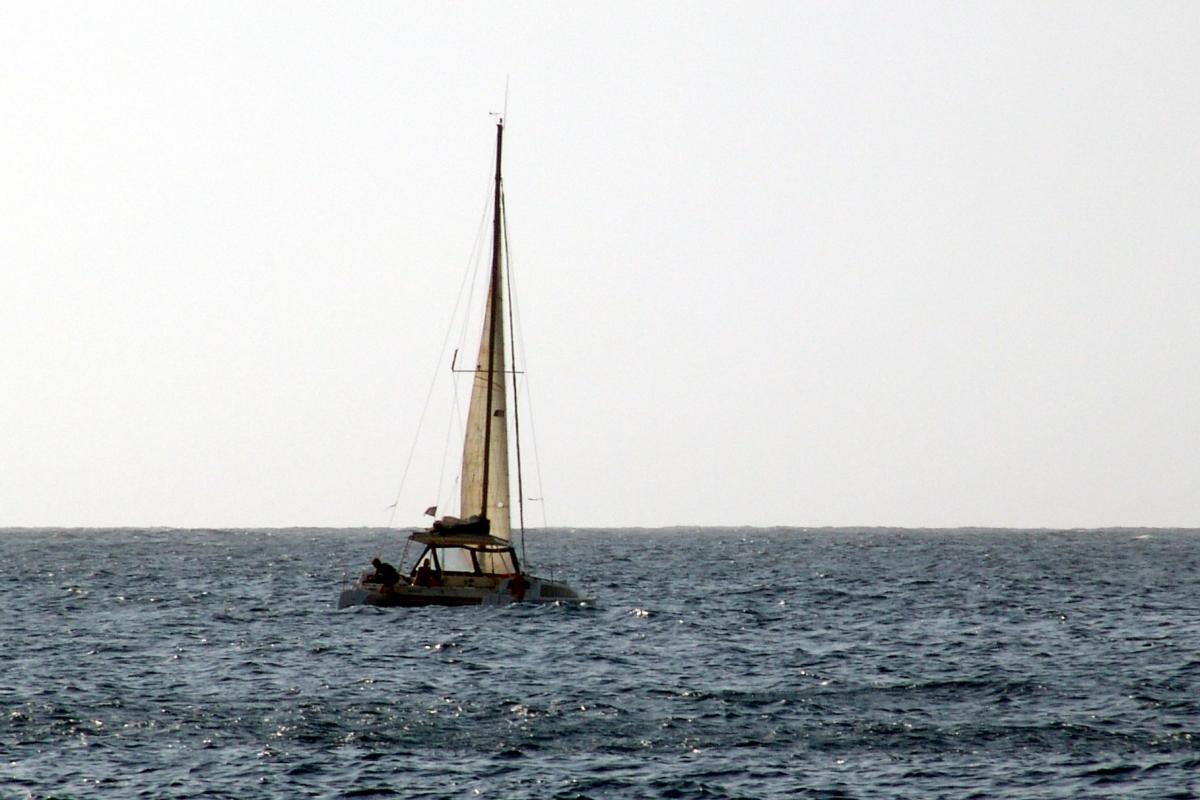 010) MULTISEN w objęciach oceanicznej fali