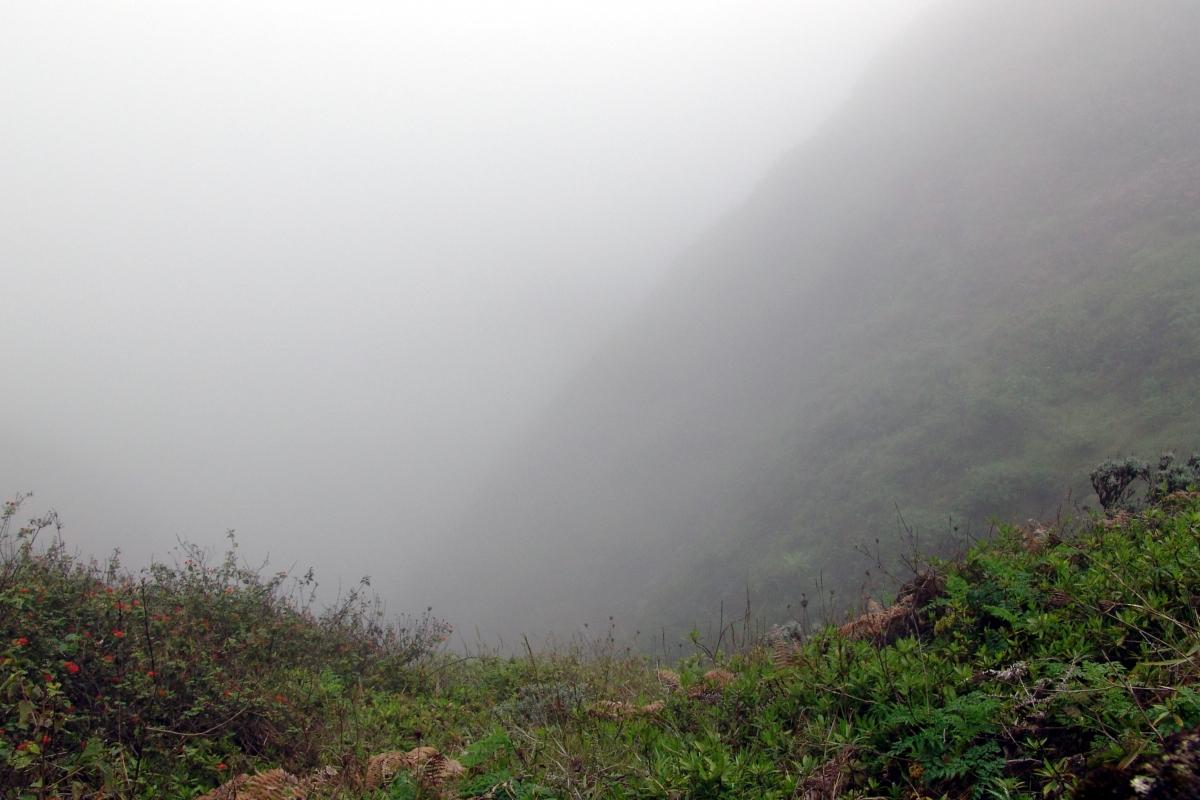 016) W chmurach