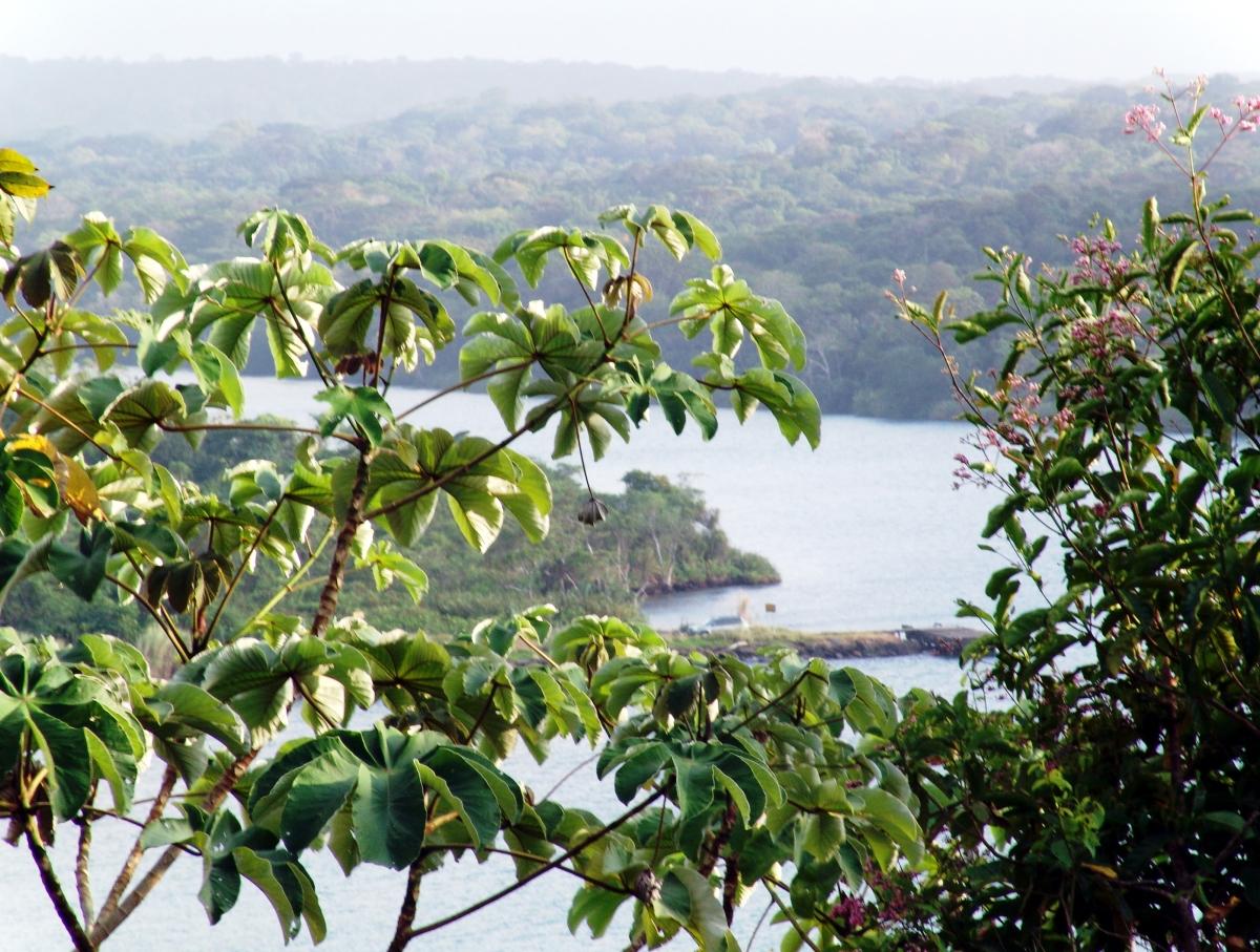 033) Rio Chagres