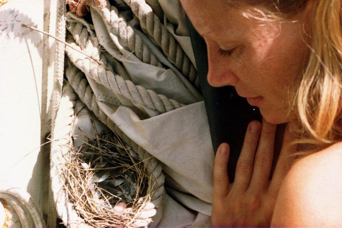 Wtykanie nosa do cudzego gniazda