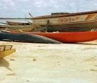 Duże dłubanki rzeczne i pirogi morskie