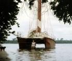 Wioletka z Laguny Ebrie