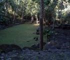 023) Osiedle archeologiczne