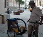 Obwożę turystów uliczkami starego Kadyksu