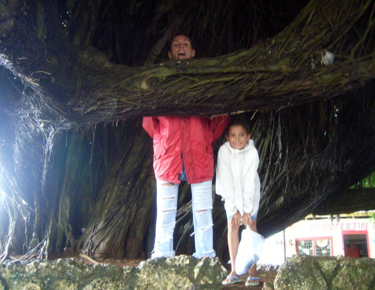 006) Drzewo zadusił, a baby nie chce