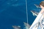 Boris i delfiny na zachodnim wybrzeżu Hiszpanii